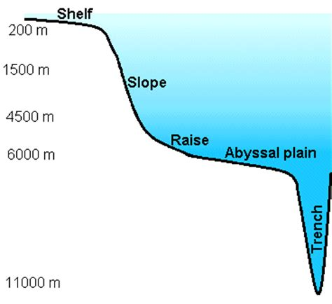 North slope salinity thesis